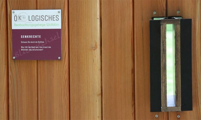 2014-10-16-Beobachtungsstation-Senkrechte-MK