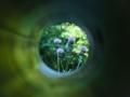 Beobachtungsstation PUNKT | © M. Kuhnt | 24.07.2014
