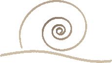 Logo Ökologisches Beobachtungsgehege Walldürn